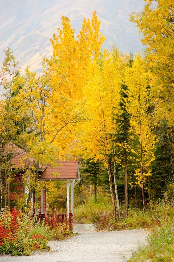 红色门廊黄色留下秋天秋季阿拉斯加 免版税图库摄影