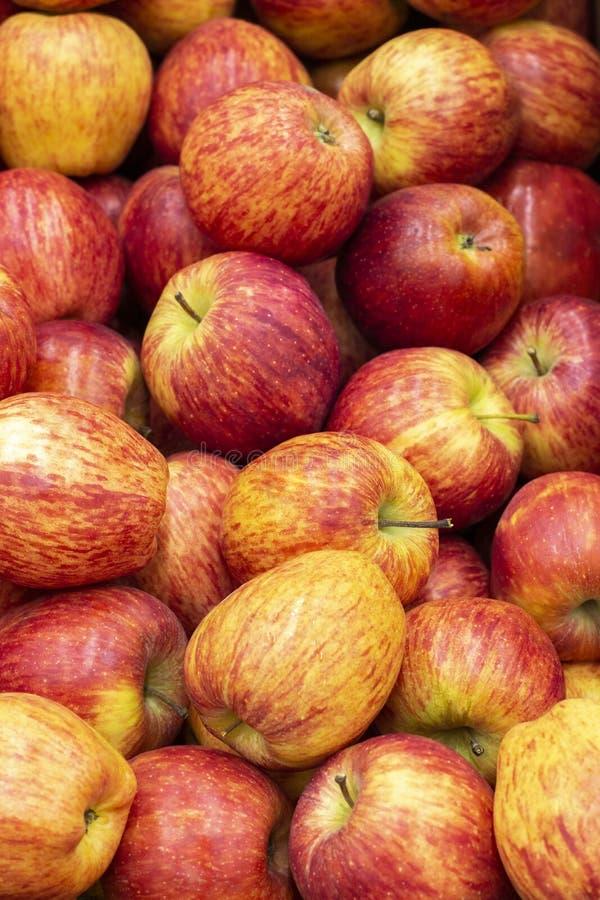 红色黄色苹果分级节目 大量成熟苹果果子,逆市场商店 图库摄影