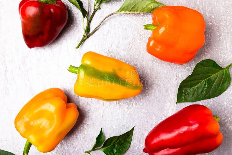 红色,橙色和黄色喇叭花在灰色背景以子弹密击 健康有机蔬菜 顶视图 艺术边界设计 框架 免版税图库摄影