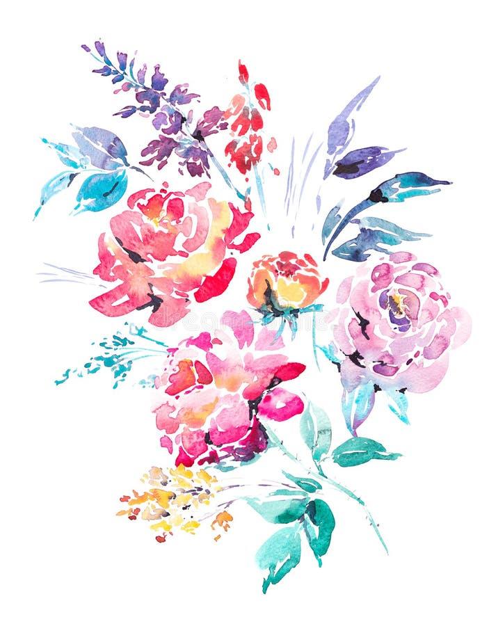红色水彩玫瑰-花,枝杈,叶子,芽 向量例证