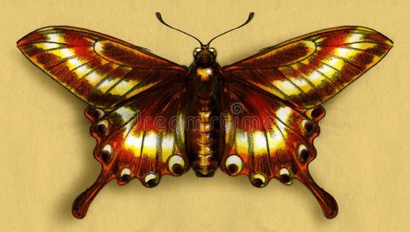 红色蝴蝶剪影 皇族释放例证