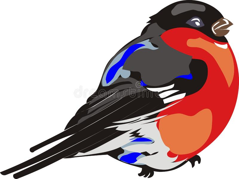红色breasted红腹灰雀 免版税库存图片