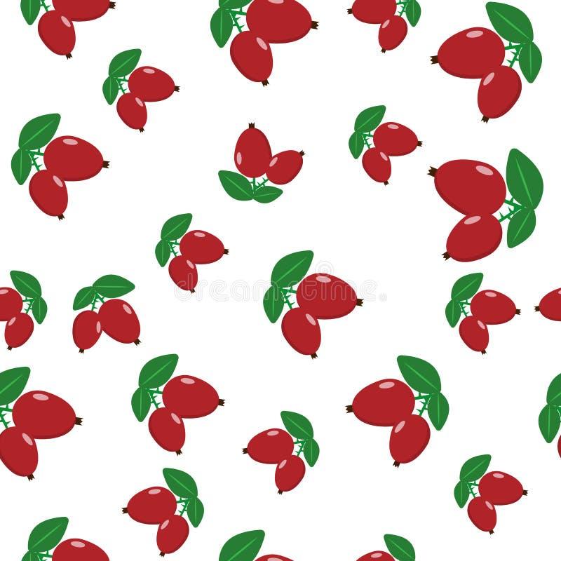 红色dogrose莓果的无缝的样式  皇族释放例证