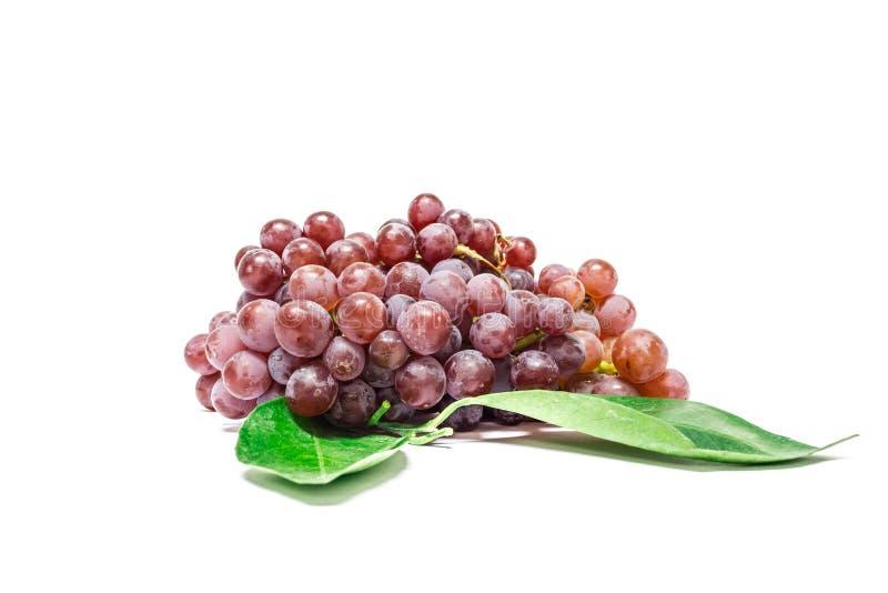 红色grapes5 库存照片