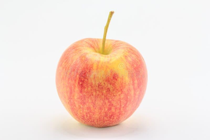 红苹果 图库摄影