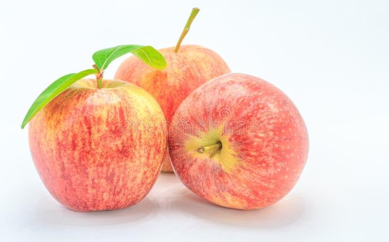 红苹果 免版税图库摄影
