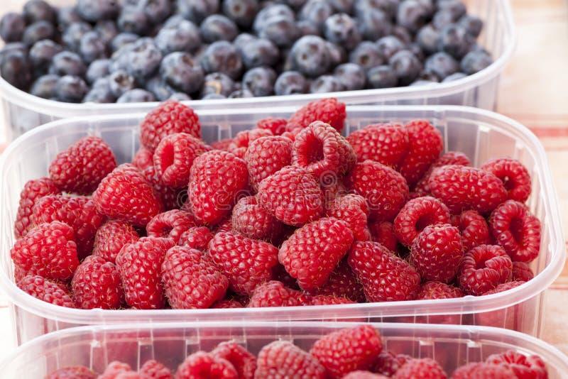 红草莓 塑料盘子用几个莓 莓 免版税库存照片
