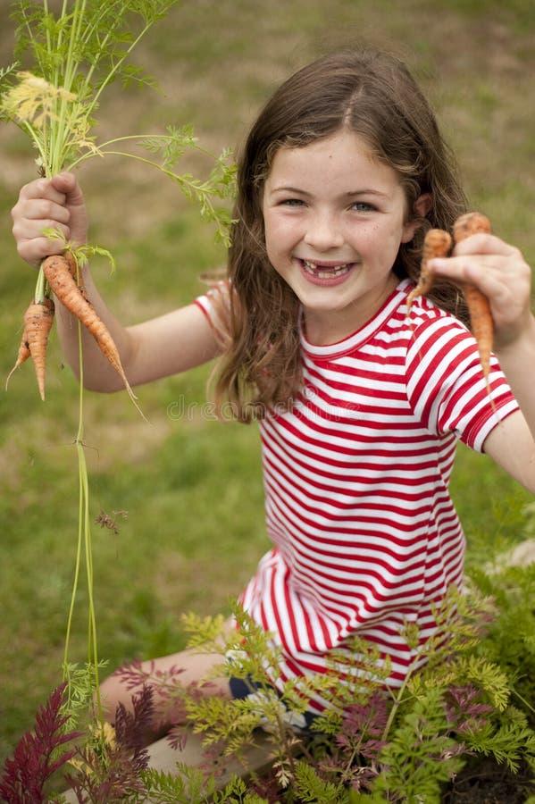 红萝卜庭院女孩挑选蔬菜 图库摄影