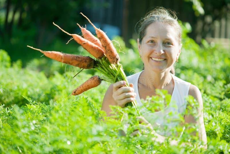 红萝卜成熟挑选妇女 免版税库存照片