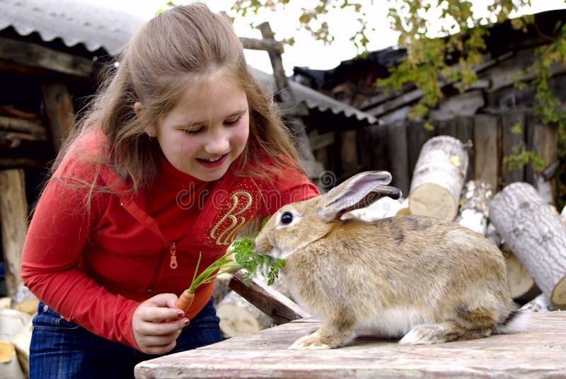 红萝卜提供女孩兔子 库存照片