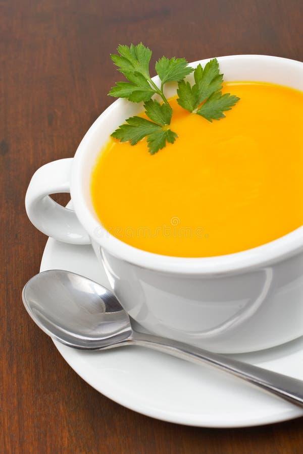 红萝卜荷兰芹纯汁浓汤 库存照片