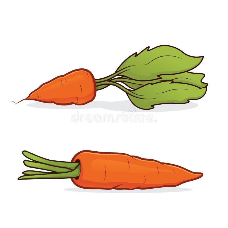 红萝卜 库存例证