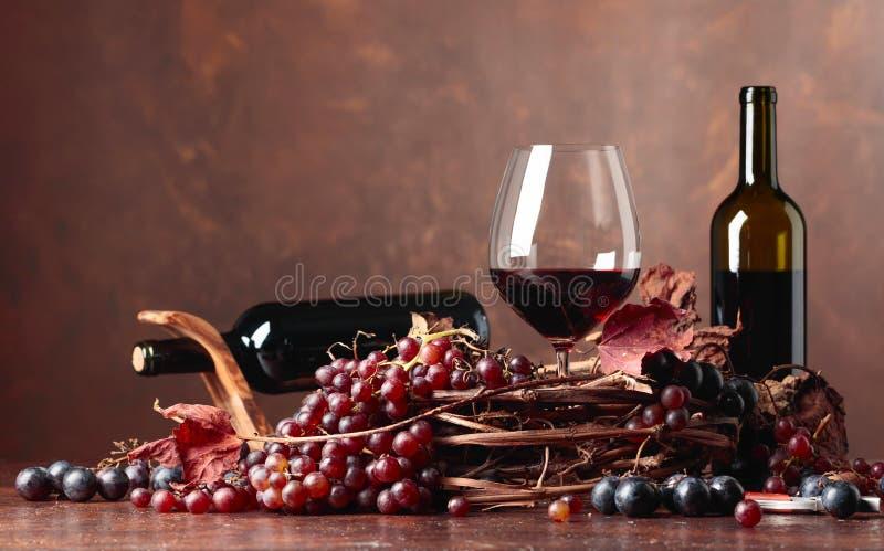 红葡萄酒和新鲜的葡萄与烘干藤离开 免版税图库摄影