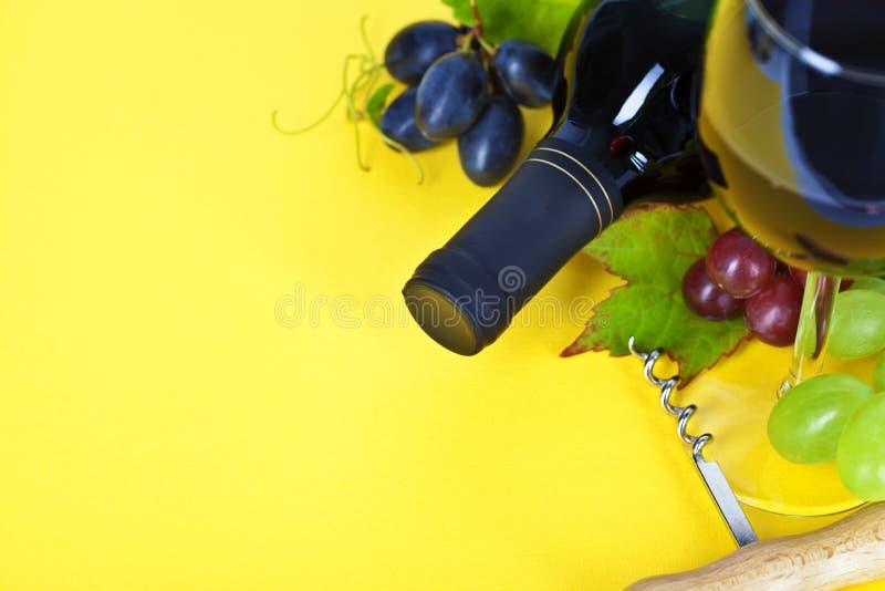 红葡萄酒和新鲜的葡萄 免版税图库摄影