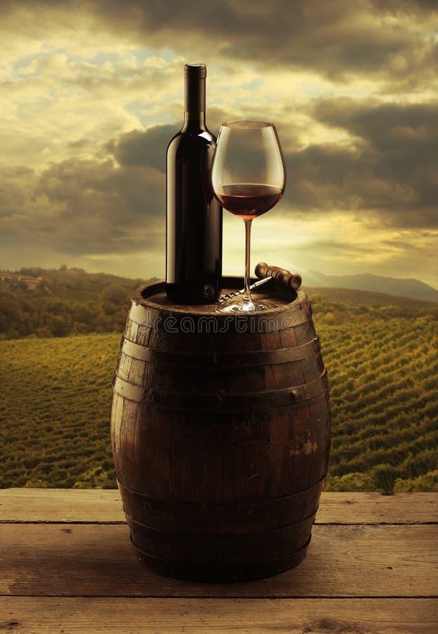 红葡萄酒葡萄园 库存照片