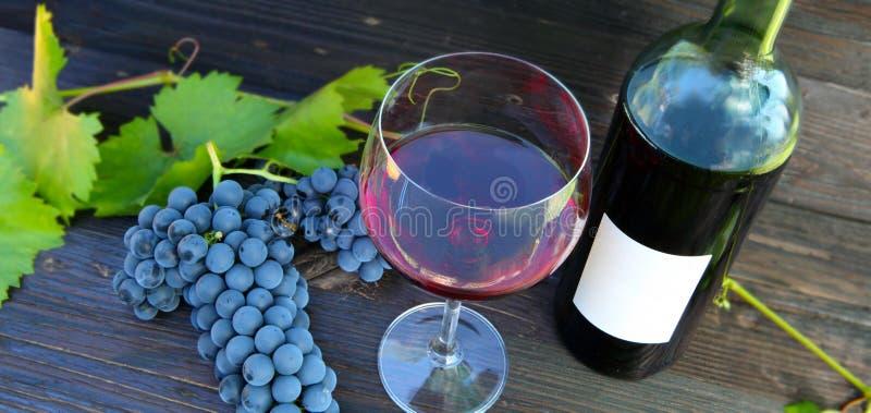 红葡萄酒,酒节 库存照片