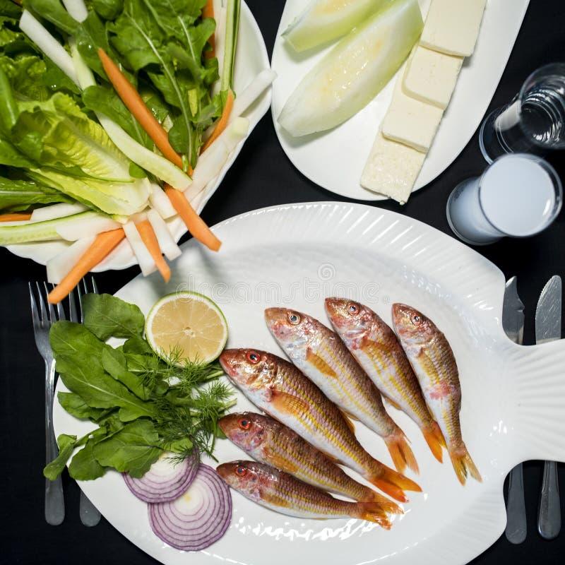 红鲻鱼鱼用蔬菜沙拉、希腊白软干酪、瓜和土耳其酒精raki 库存照片