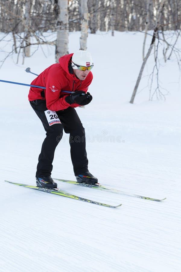 红黑体育衣服的男性滑雪者从山乘坐在滑雪在冬天森林里 免版税库存图片