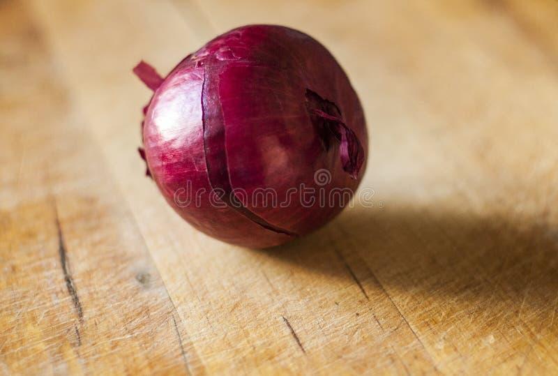 红洋葱一 免版税库存图片