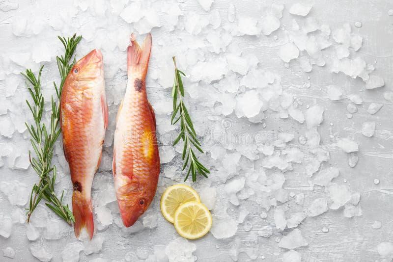 红鲻鱼鱼烹调 库存图片
