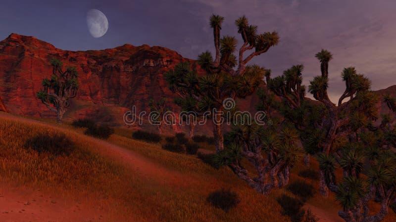 约书亚树和岩石丛林在甲晕下 皇族释放例证