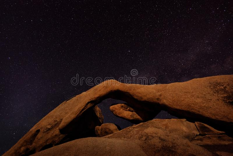 约书亚树繁星之夜 库存照片