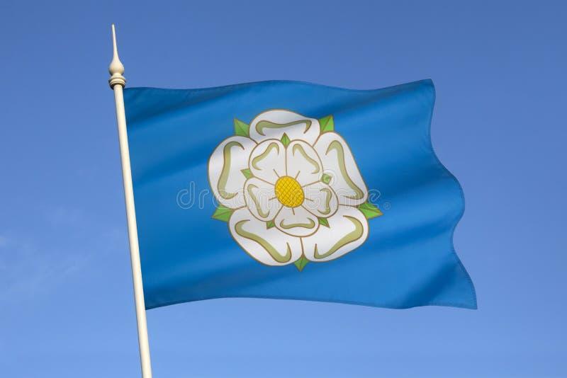 约克夏-英国的白玫瑰 免版税库存图片