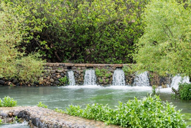 约旦河的Banias春天来源 免版税库存图片