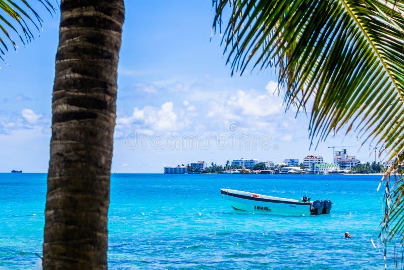 约翰尼岩礁,哥伦比亚- 2017年10月21日:棕榈树在约翰尼岩礁,圣安德烈斯,一个美丽的海滩的哥伦比亚海岛  库存图片