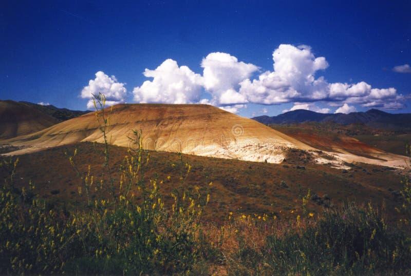 约翰迪化石床-俄勒冈 免版税库存照片