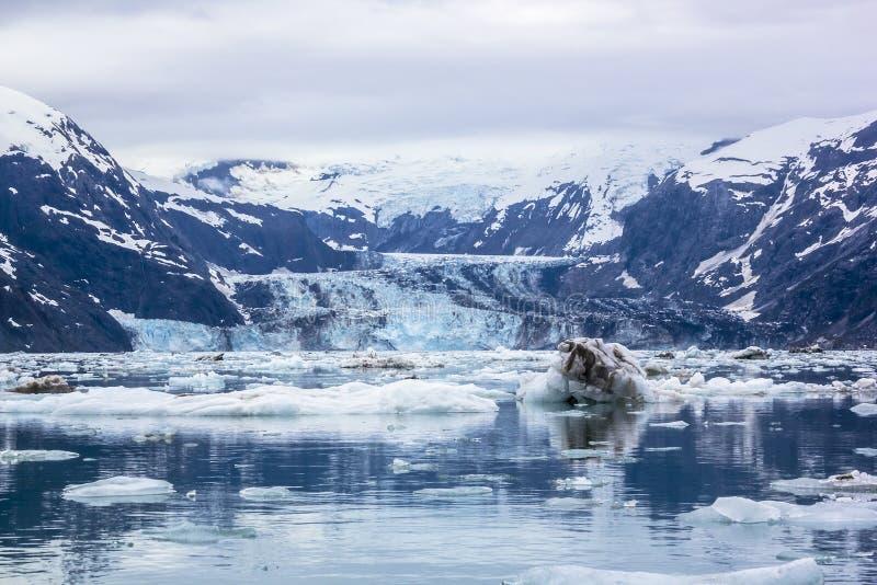 约翰霍普金斯冰川在有雾的天在冰河海湾国家公园。 免版税库存图片