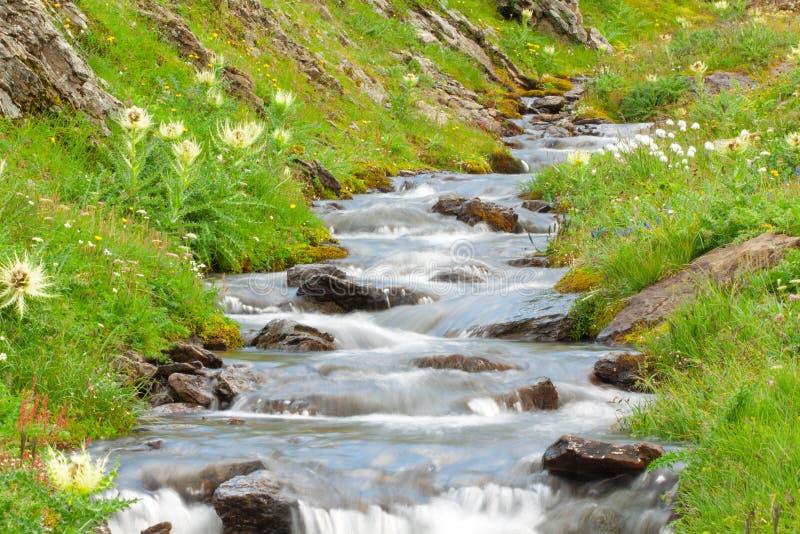 级联小的瀑布 库存照片