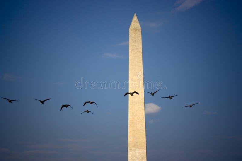 纪念碑华盛顿 免版税图库摄影