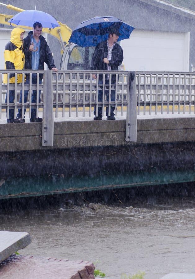 纬向条花洪水飓风艾琳・佛蒙特 免版税库存图片