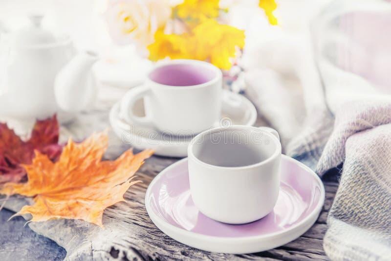 纯净的咖啡或茶具 一个对在舒适秋天背景的典雅的瓷浅灰色和粉红彩笔杯子 免版税库存照片