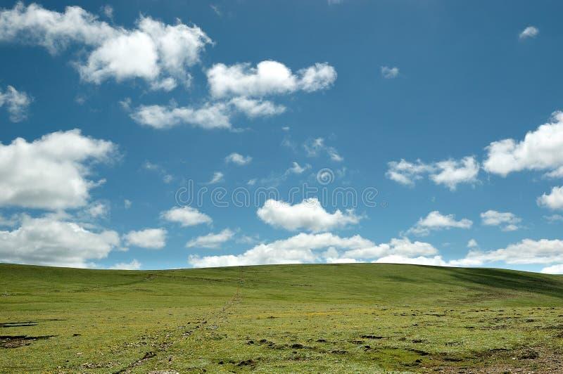 纯净的天空蔚蓝与写在草甸的云彩 库存照片