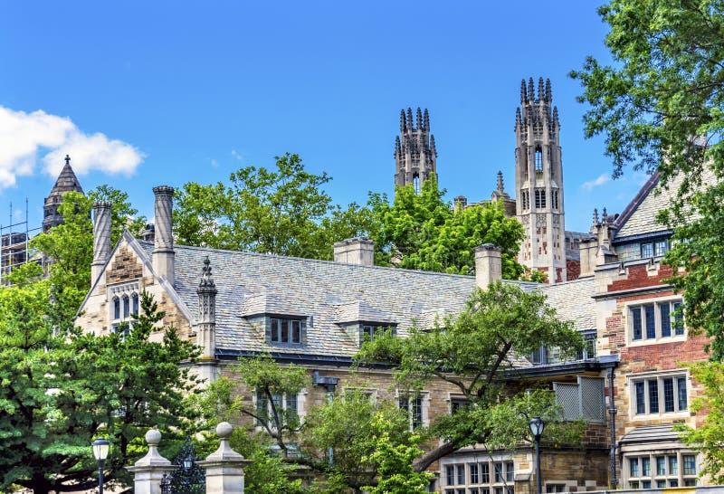 纯正的法学院夏天耶鲁大学纽黑文康涅狄格 库存图片