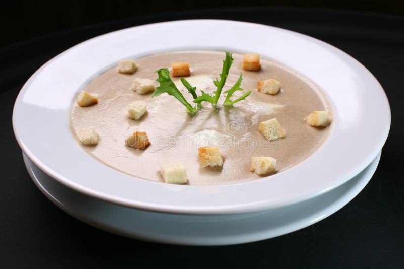 纯汁浓汤汤 免版税图库摄影