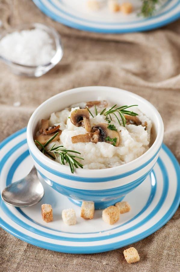 纯汁浓汤用花椰菜和蘑菇 图库摄影