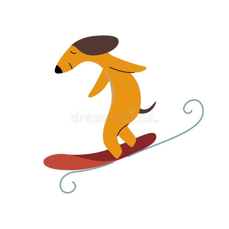 纯血统布朗达克斯猎犬狗冲浪者捉住的波浪,滑稽的嬉戏的宠物卡通人物传染媒介例证 皇族释放例证