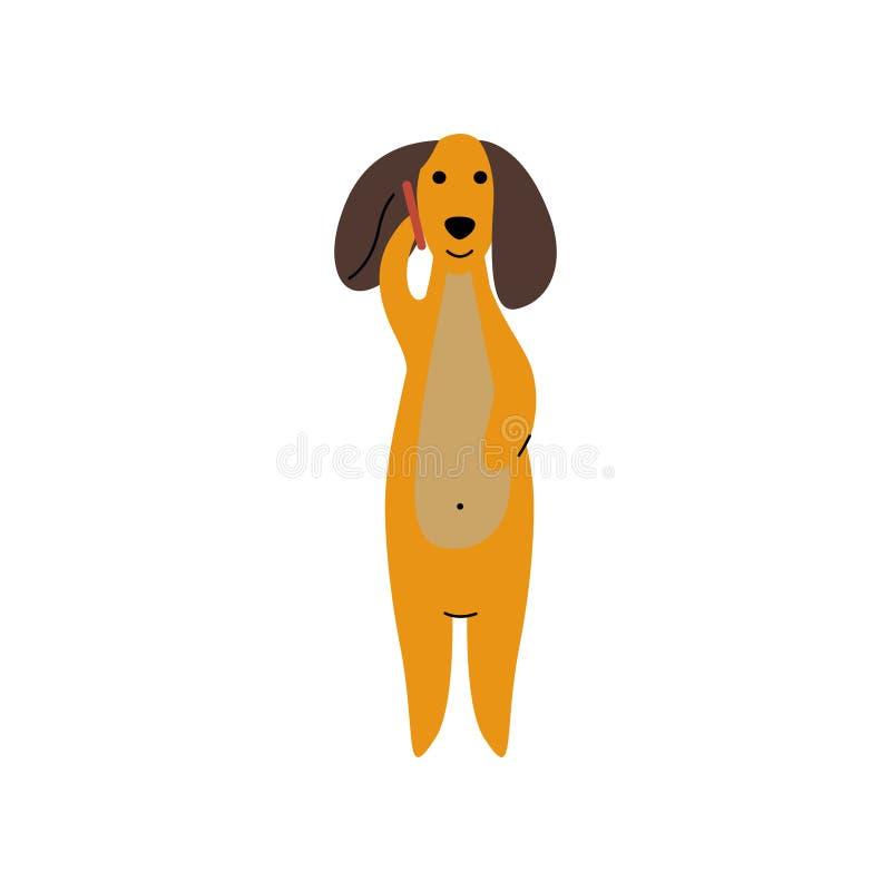 纯血统布朗达克斯猎犬狗谈话在电话,滑稽的嬉戏的宠物卡通人物传染媒介例证 向量例证