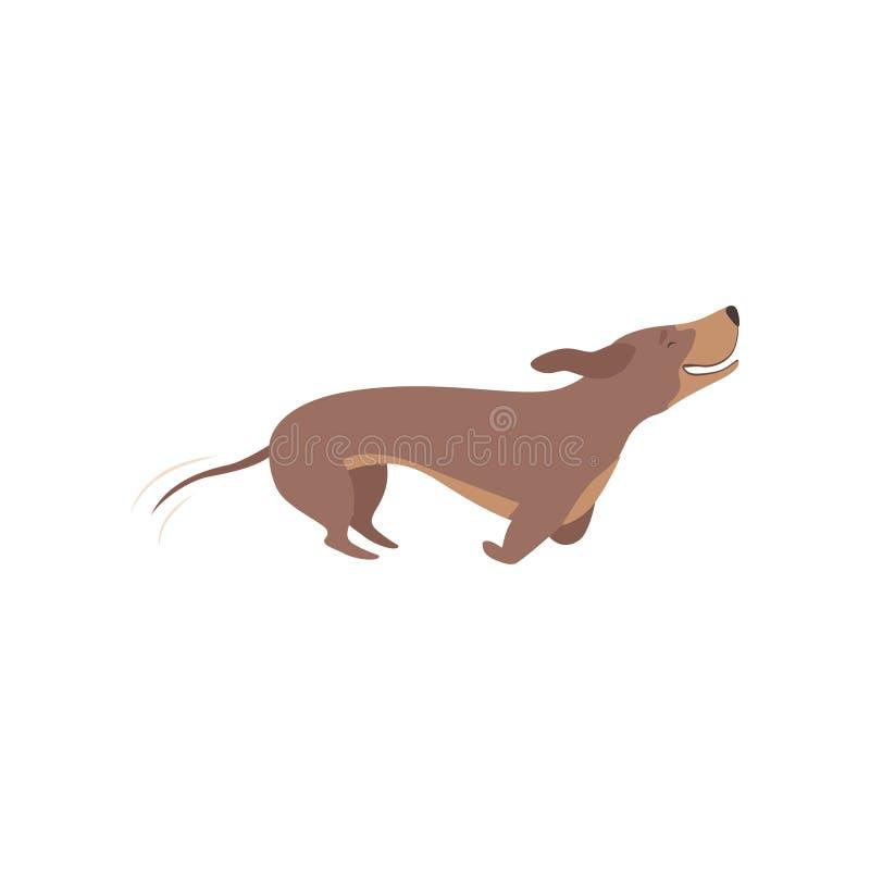 纯血统棕色在白色背景的达克斯猎犬狗连续传染媒介例证 皇族释放例证