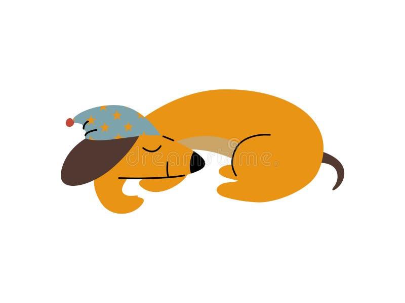 纯血统睡觉布朗达克斯猎犬狗佩带的盖帽,滑稽的嬉戏的宠物卡通人物传染媒介例证 向量例证
