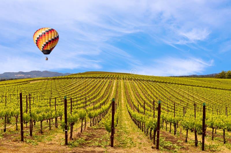 纳帕谷葡萄园,春天,山,天空,云彩,热空气气球 免版税库存照片