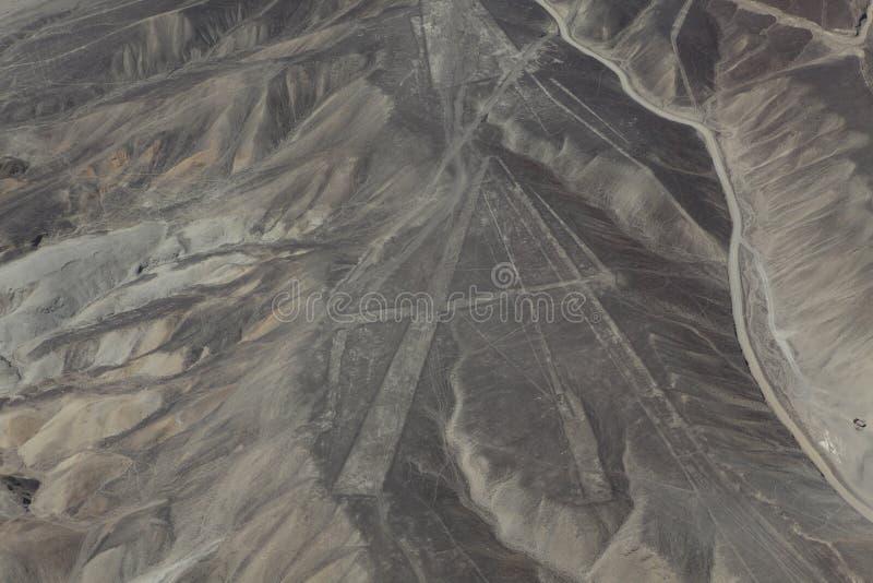 纳斯卡线在秘鲁 免版税库存照片