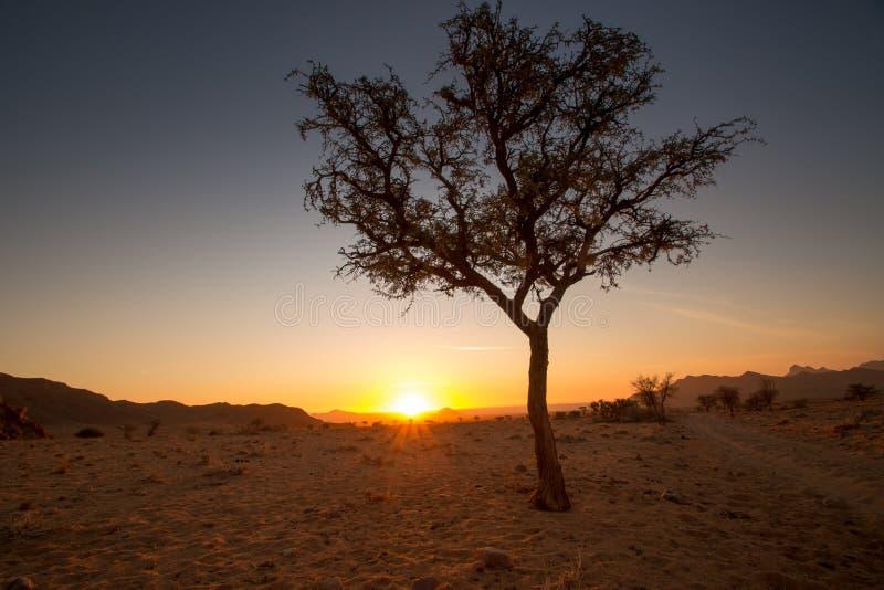 纳米比亚日落 免版税库存照片