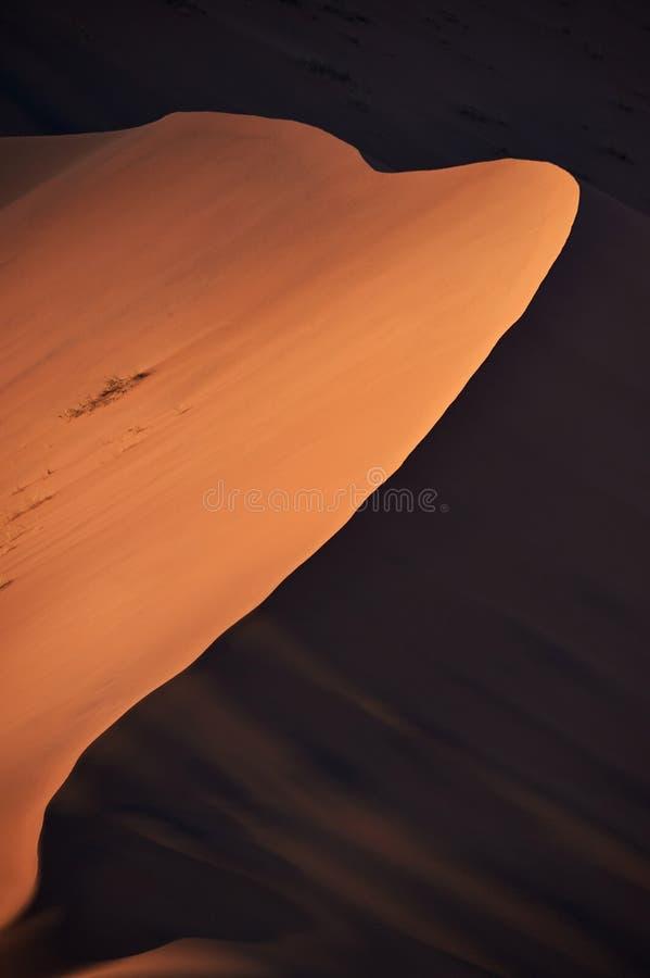 纳米比亚沙漠沙丘,抽象图象 图库摄影
