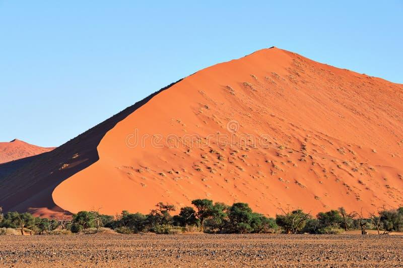 纳米比亚沙漠沙丘 库存照片
