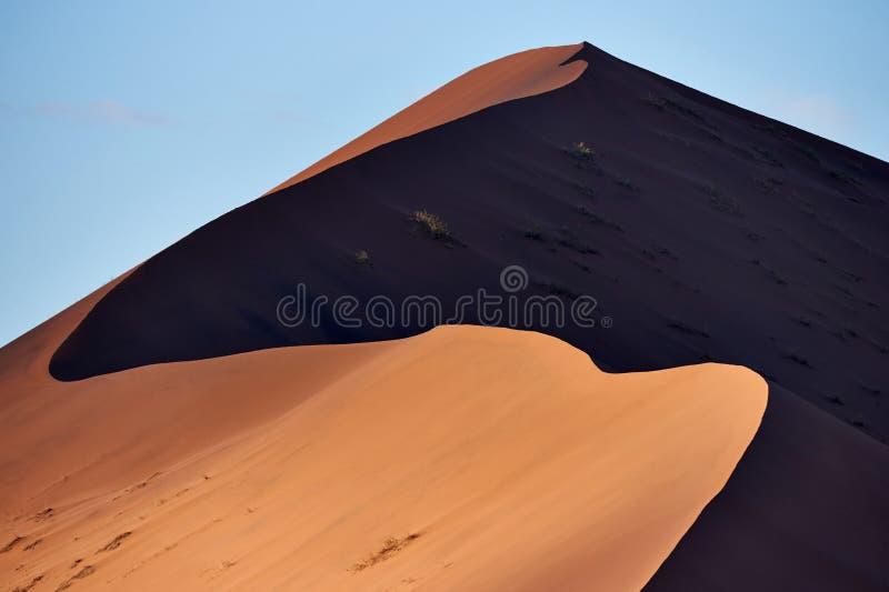 纳米比亚沙漠沙丘 免版税图库摄影