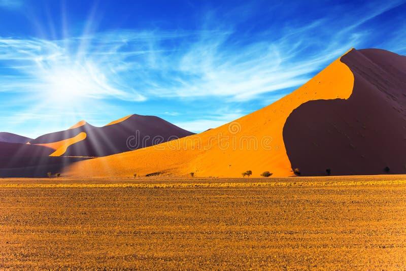 纳米比亚沙漠的太阳 免版税库存图片